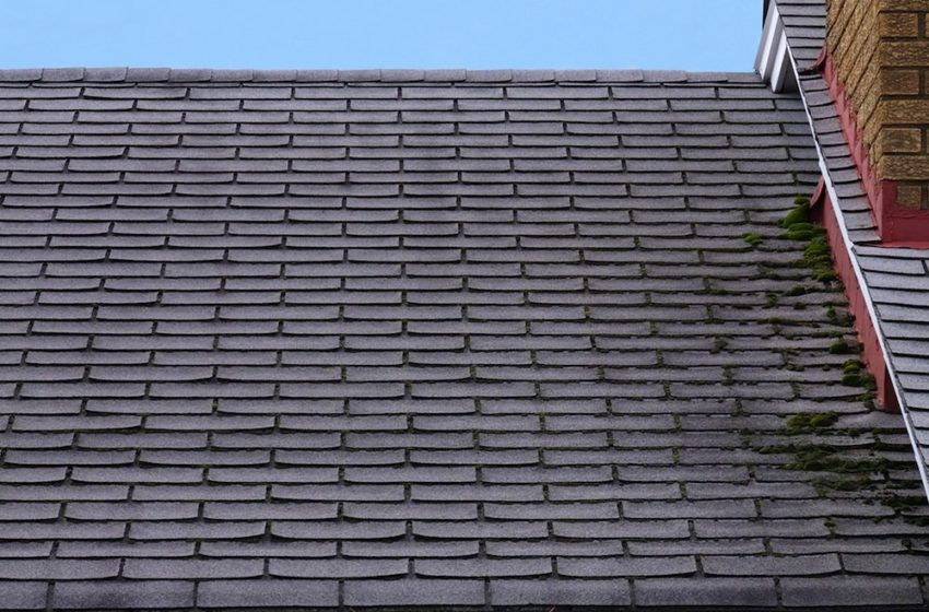 Is it the Time to Replace Your Roof?